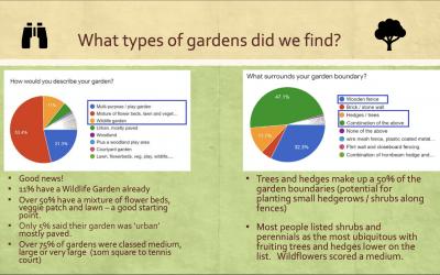 Garden Survey 2020: Results