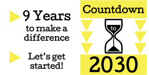 2030 Countdown 9 Years Banner