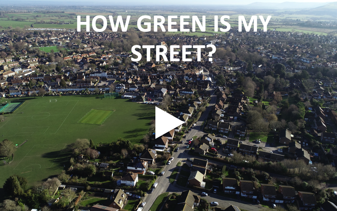 How Green is my Street?